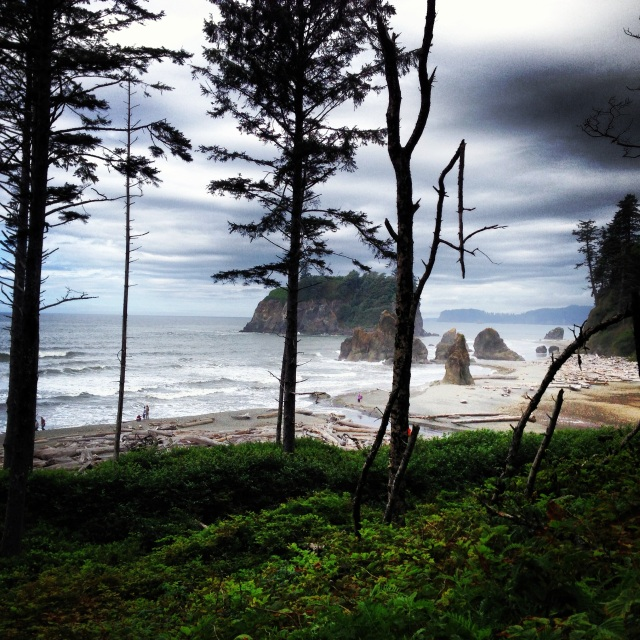Dani Buckley Ruby Beach Pacific Coast
